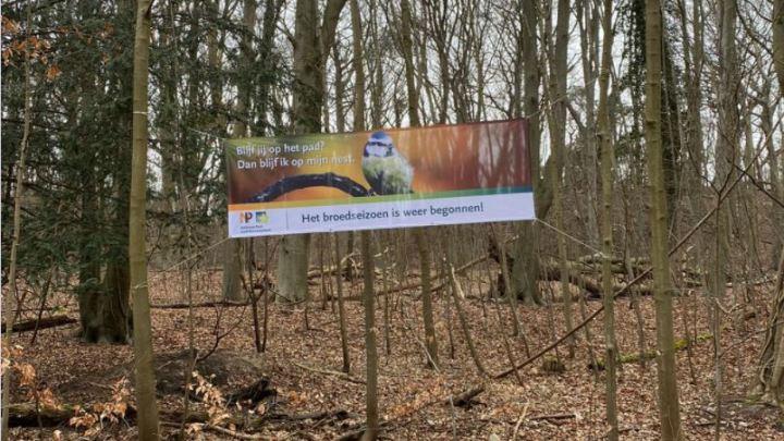 Broedseizoen gestart in Nationaal Park Zuid-Kennemerland: Blijf jij op het pad? Dan blijf ik op mijn nest