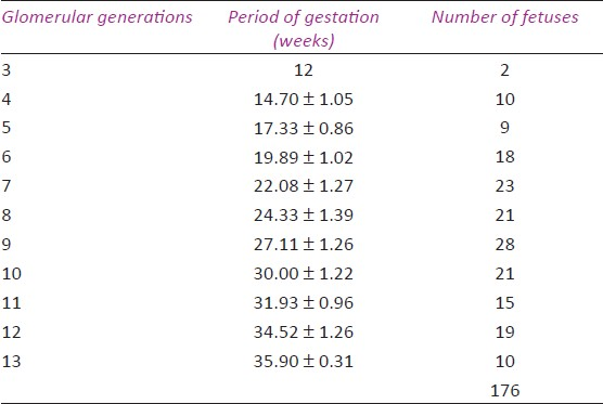 Glomerulogenesis: Can it predict the gestational age? A