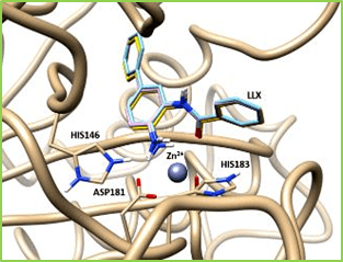 Figure 18: The binding pose of the ligand N-(4-aminobiphenyl-3-yl) benzamide (designated as LLX) in the original crystal structure of HDAC/inhibitor complex (yellow), the pose with local optimization (cyan), and the pose predicted with AutoDock4 docking with the scoring function AutoDock4RAP(pink). The root-mean-squared deviations of the two predicted ligand poses from the crystal pose are 0.315 Å and 0.277 Å, respectively