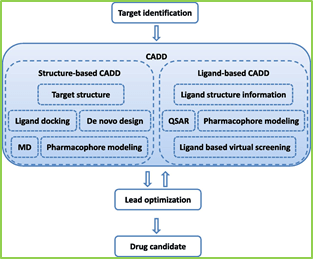 Figure 3: Flow chart of CADD in drug discovery/design