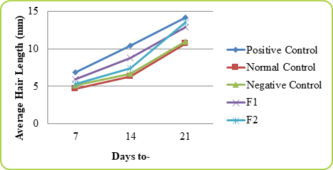 Figure: 2 Graph Average Hair Length Mice on Day 7, 14 and 21