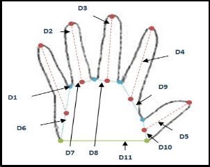 A New Features Extracted for Recognizing a Hand Geometry