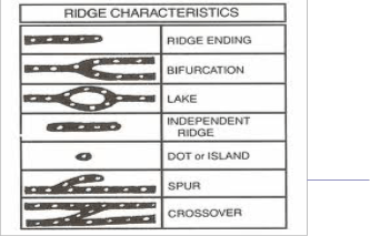 Noise Elimination And Performance Measure For Fingerprint