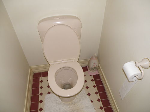 Toilet Afrikaans Meaning Of Toilet