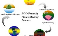 areca-palm-leaf-plates-making-business