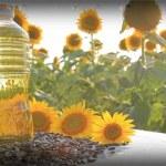 Sunflower-Oil-making-business