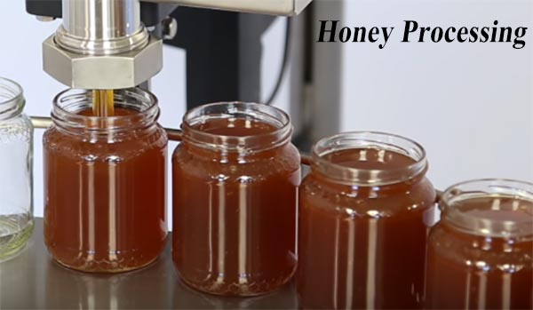 honey-processing business