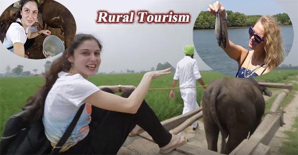 Rural tourism business