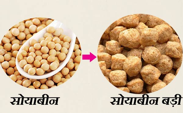 Soya chunks manufacturing business