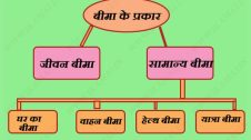 Types-of-Insurance-in-Hindi