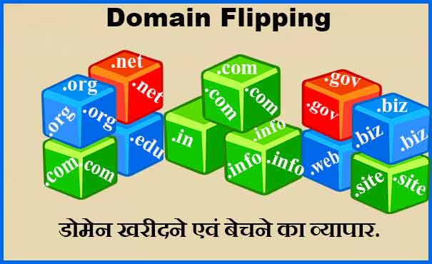 Domain flipping Business