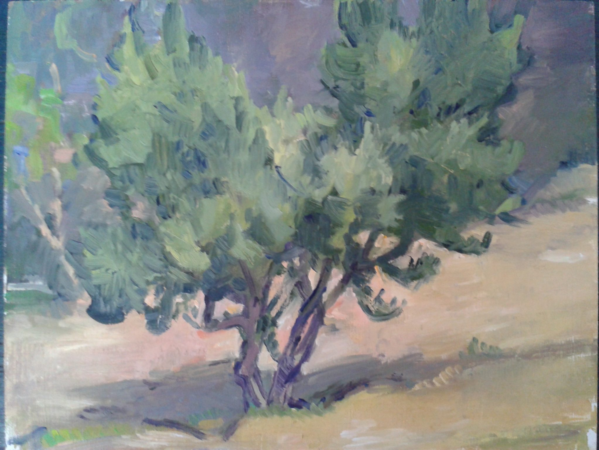 Open call for teachers and artists: <br>Host your art lessons, projects and meetings in Ikaria