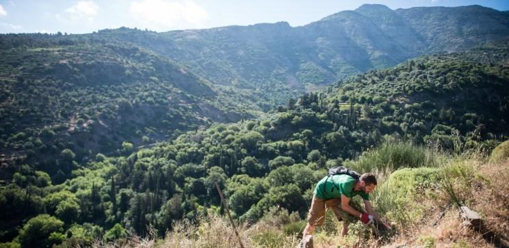 Ikaria Pathways. <br> Mountains to Beach: Arethousa > Karavostamo