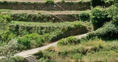 Ikaria Pathways. <br> Arethousa - Pera Arethousa