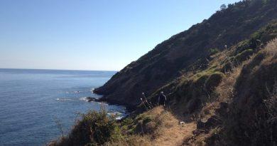 Ikaria Pathways. <br>Beach to Beach: Karavostamo > Aris Potamos