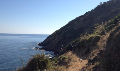 Ikaria Pathways, Beach to Beach: Karavostamo > Aris Potamos