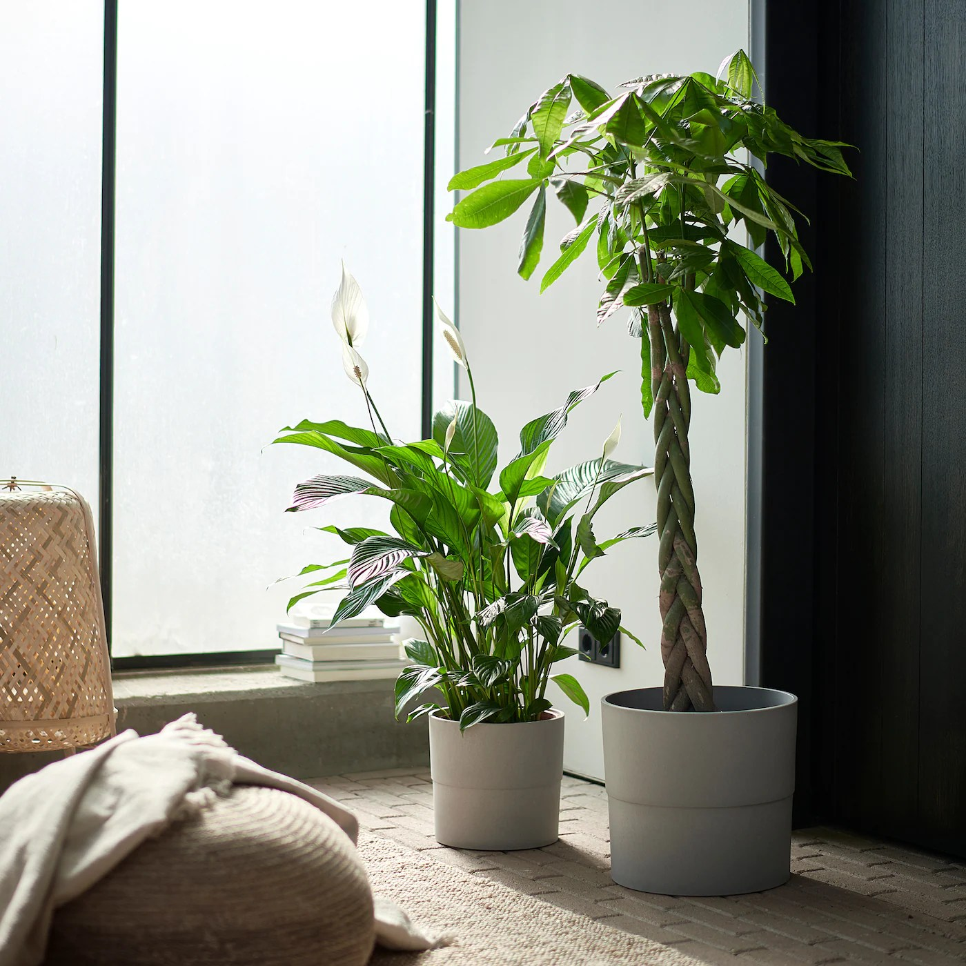 Nypon Cache Pot Interieur Exterieur Gris 32 Cm Ikea