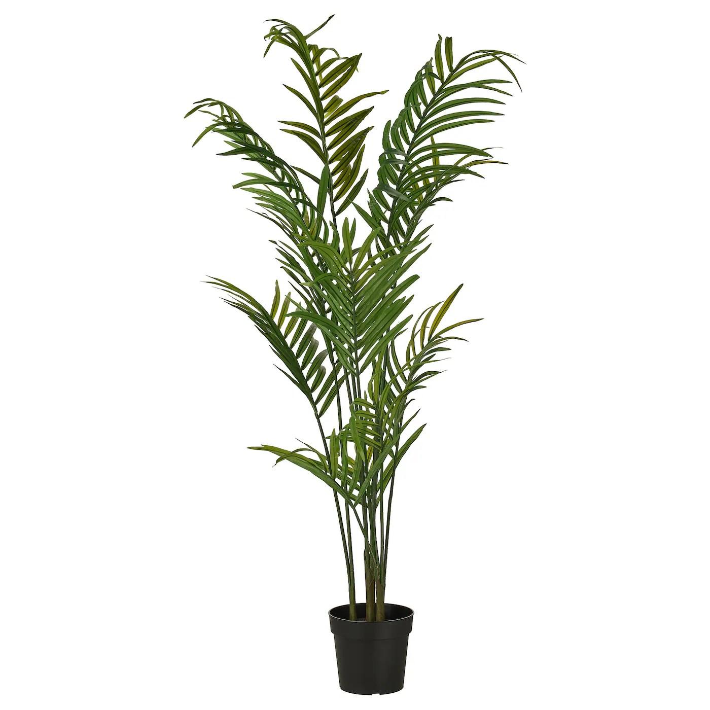 plants flowers ikea
