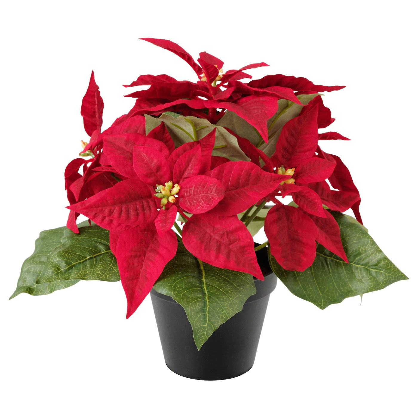 https://i0.wp.com/www.ikea.com/gb/en/images/products/fejka-artificial-potted-plant-poinsettia-red__0538278_pe651824_s5.jpg