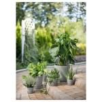 Smulgubbe Concrete Effect Outdoor Plant Pot And Saucer Height 20 Cm Max Diameter Flowerpot 21 Cm Ikea