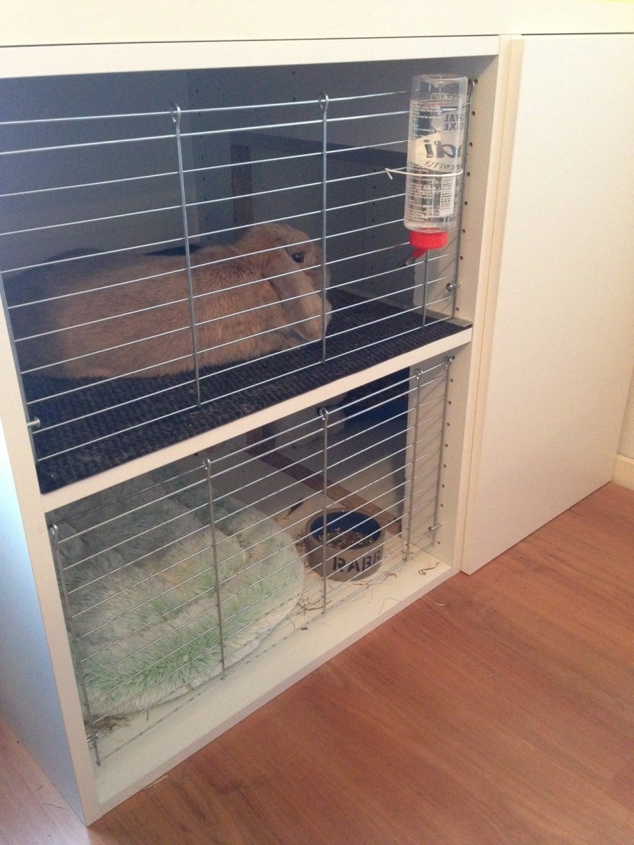 Bunny Cage with Faktum cabinets  IKEA Hackers  IKEA Hackers