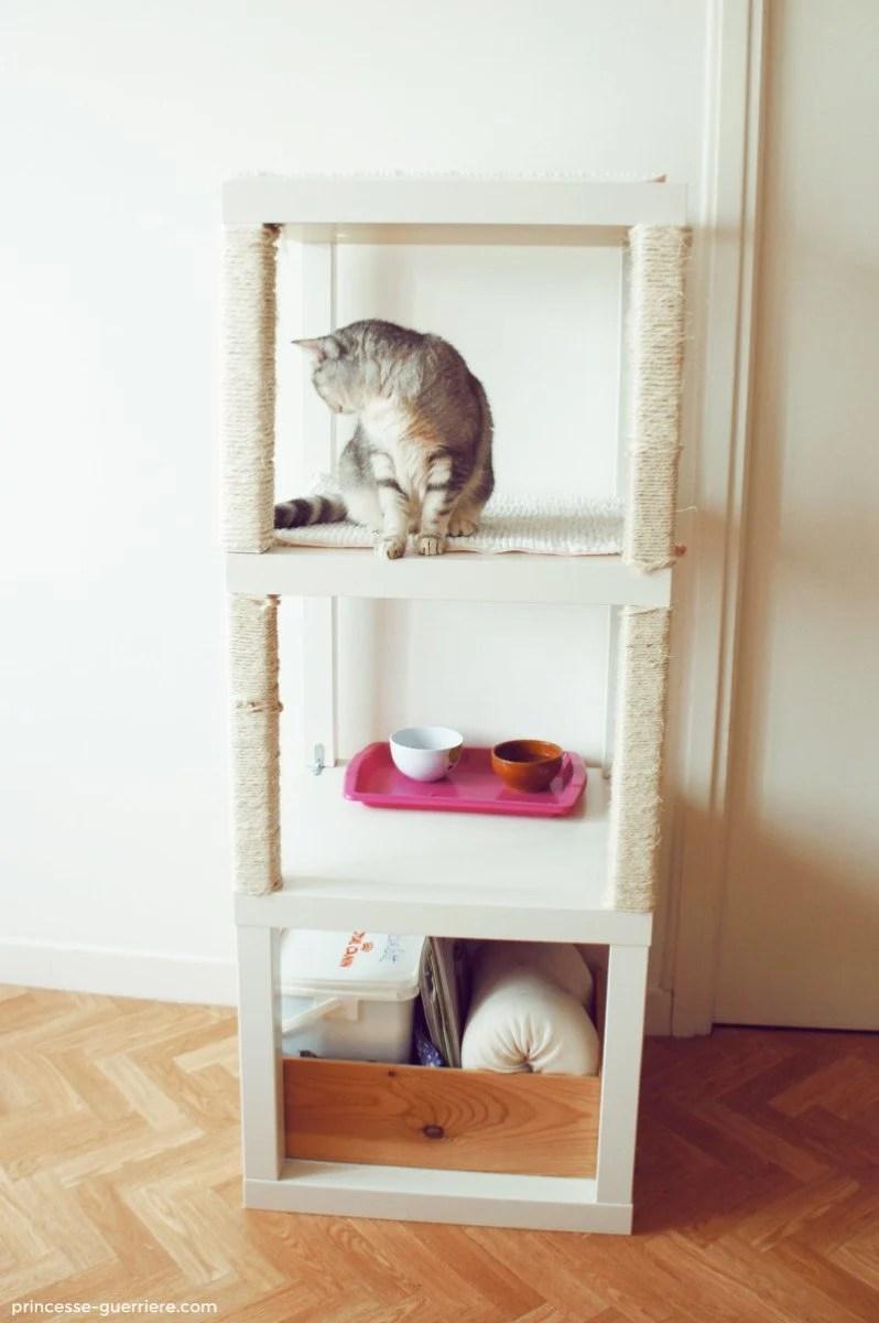 Cat Climbing Furniture