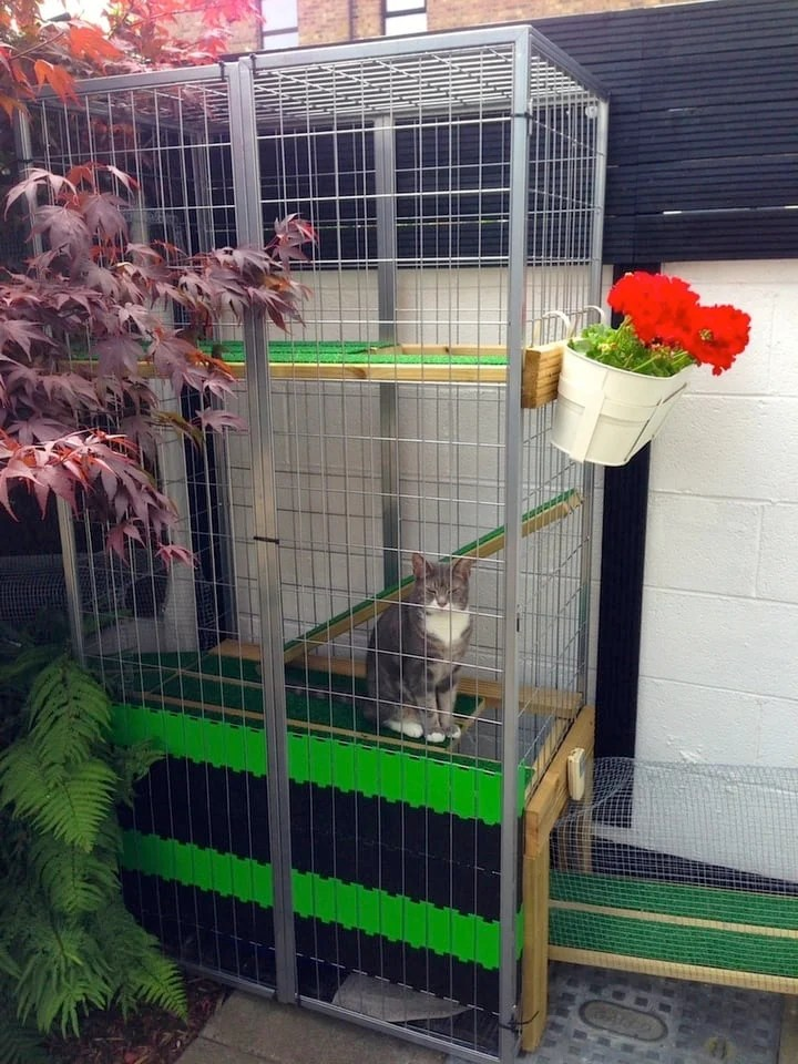 kitchen wire shelving black islands a garden catio - cat paradise! ikea hackers