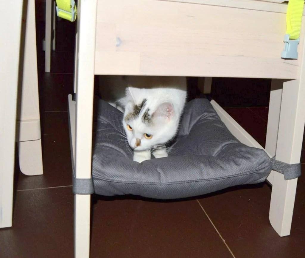 cushy cat chair hammock cat chair hammock  so cushy your cat will love it   ikea hackers  rh   ikeahackers
