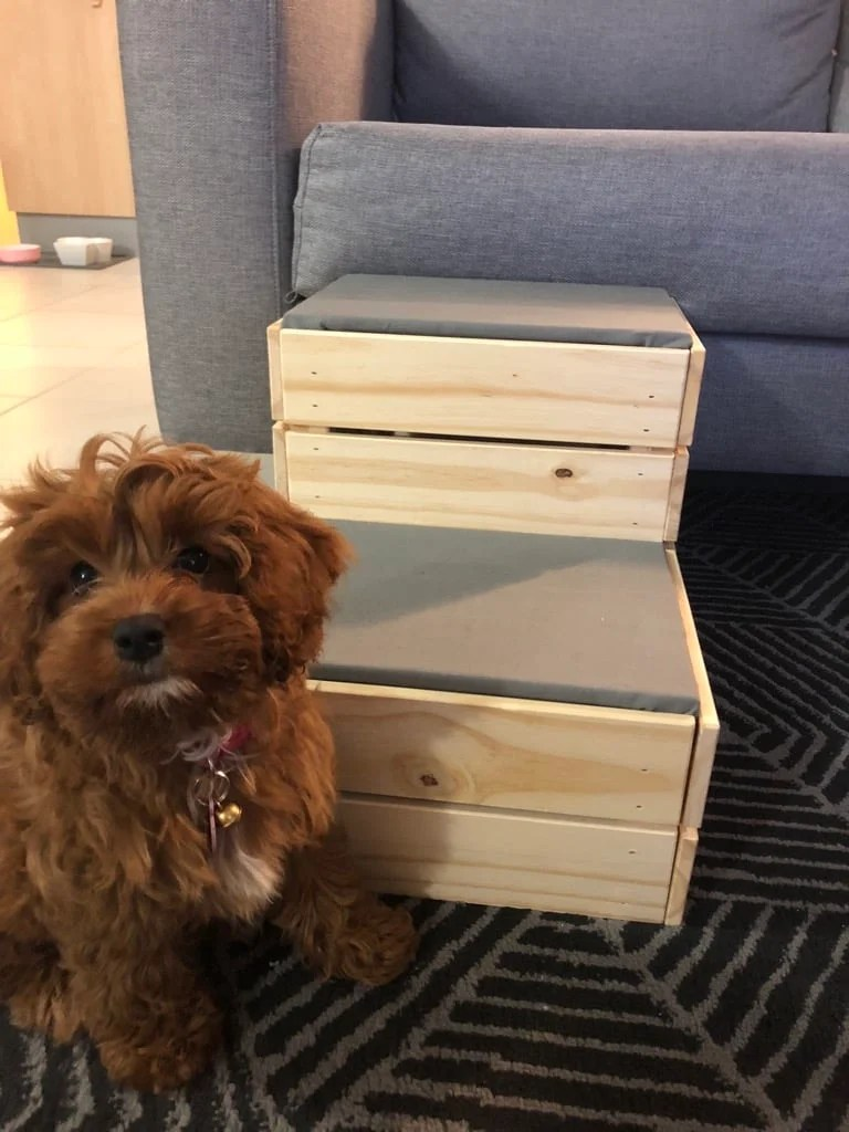 Small dog? DIY these dog steps from IKEA crates