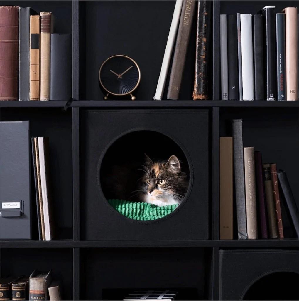 LURVIG cat cube