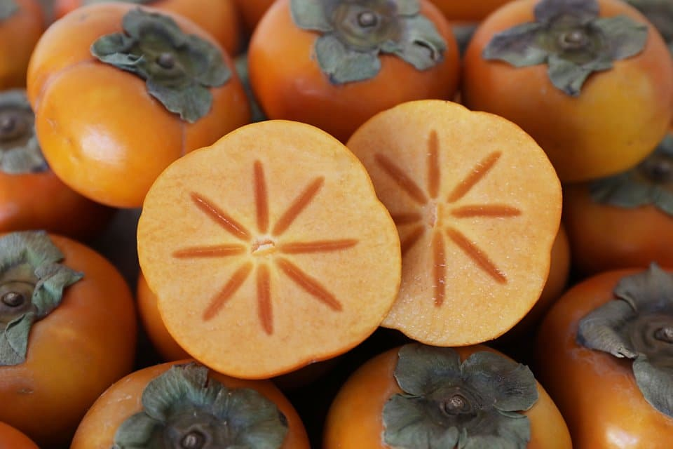 the national fruit of japan