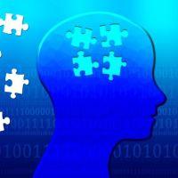 脳内のパズルピースを集める