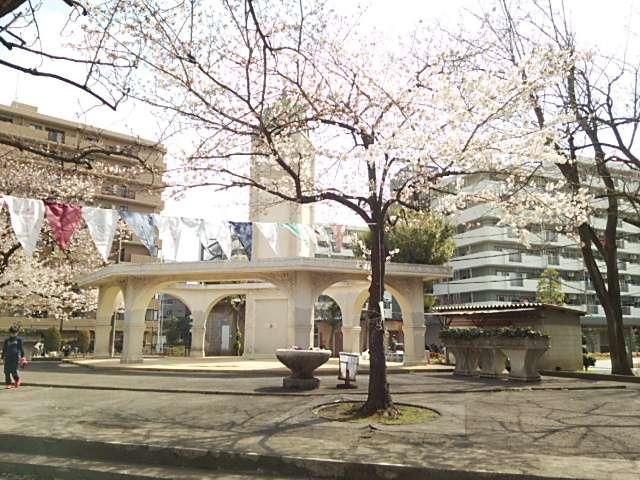 赤羽公園桜02