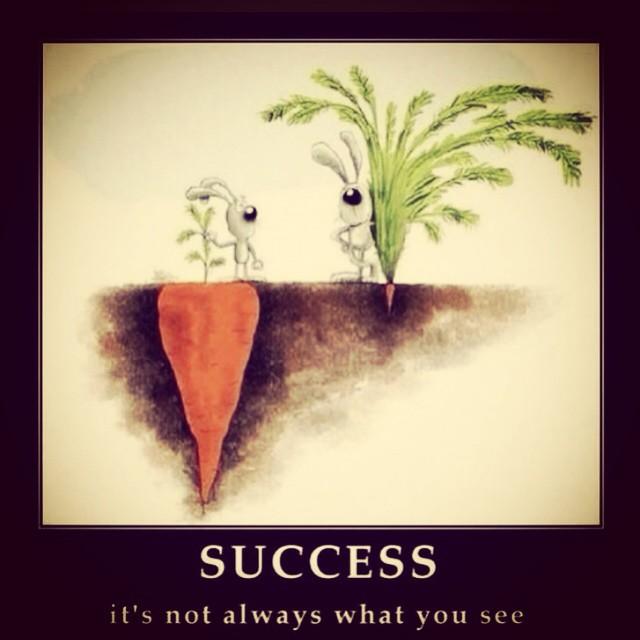 success carrot