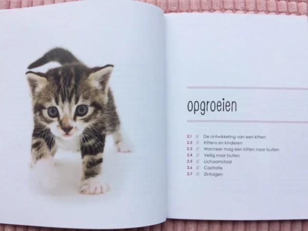 Pagina opgroeien uit opvoedgids voor kittens