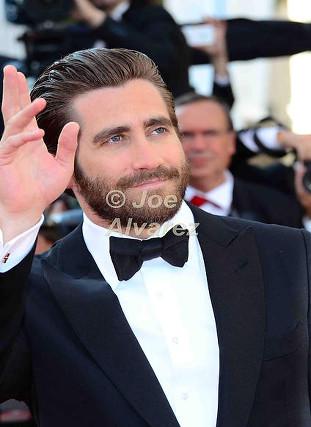 Jake Gyllenhaal 68th Cannes Film Festival © Joe Alvarez