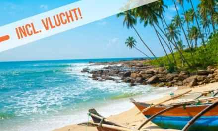 Dagaanbieding – De schatten van Sri Lanka