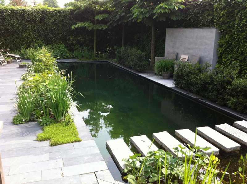 Vijver voorbeelden  van zwemvijver tot siervijvers