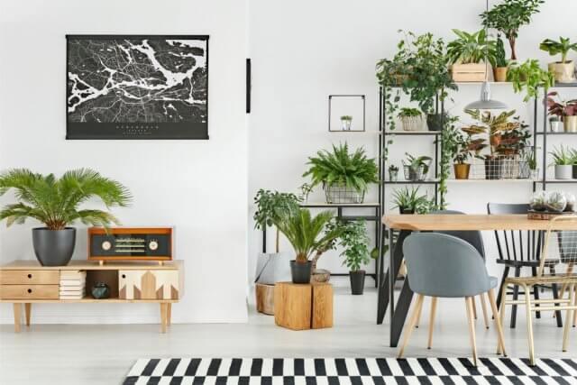 Een botanisch interieur deze items mogen niet ontbreken