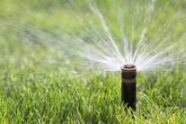 When and How to Water the Lawn