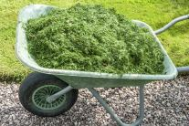 How to Make Compost With Grass Clippings