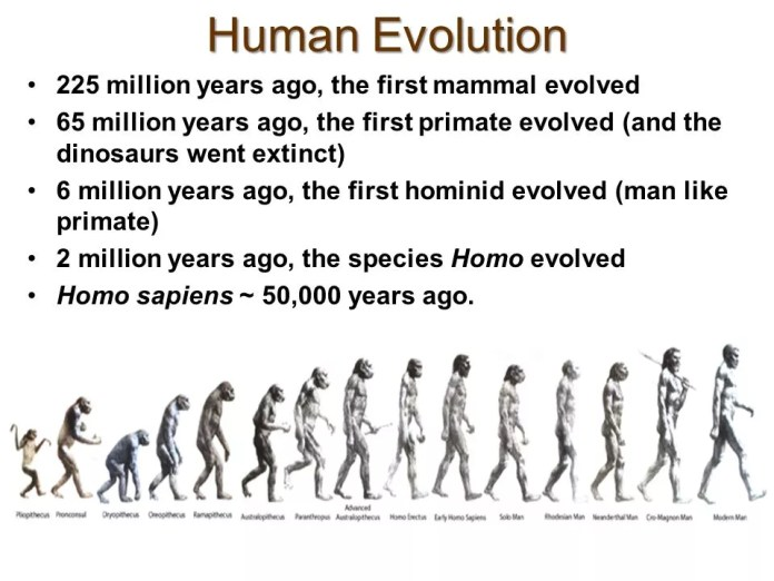 HumanEvolution225millionyearsagothefirstmammalevolved மானுட சமூகத்தின் பரிணாமம் (பாகம் 01)- ந.மாலதி