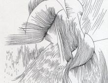Meditation Drawings