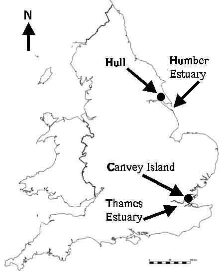 PhD Dissertation: Coastal Settlements at Risk