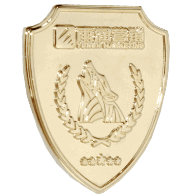 2016 stamping custom lapel pins promotional item china lapel pins 3
