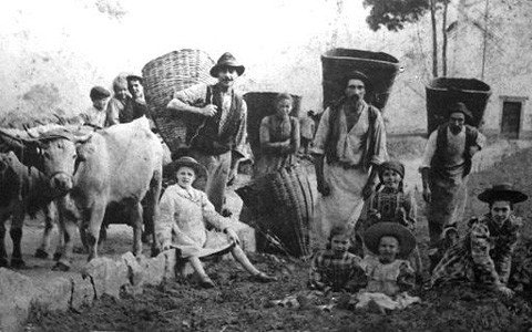 Nuovo presepe contadino  ilbacodaseta