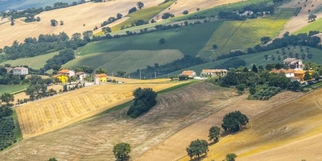 Si valorizza tutto ma non il paesaggio agrario