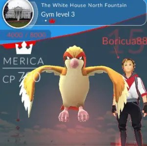 Pokémon Go Merica