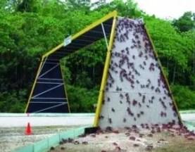 L'isola di natale: ponte per granchi
