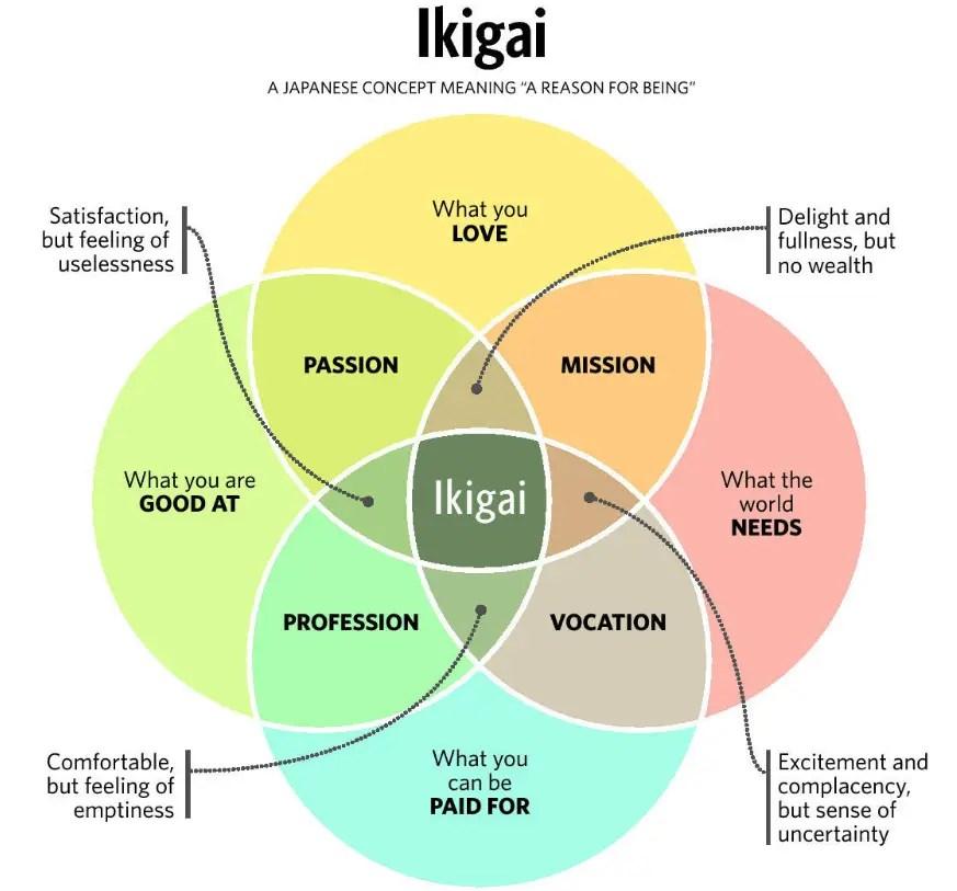 schema ikigai